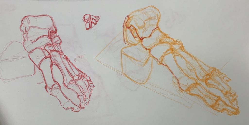 60%Alkuhulˈs Sketchbook Image012