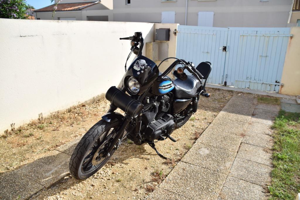 combien sommes nous en 1200 Sportster sur Passion-Harley - Page 39 Dsc_7911