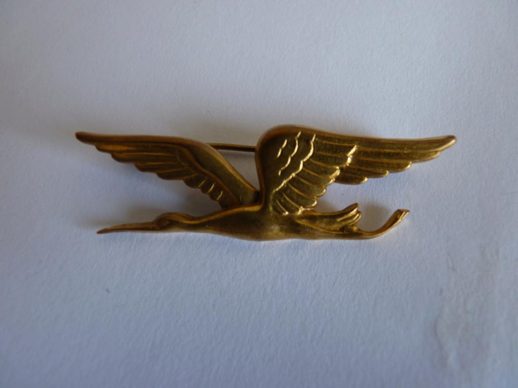 identification insigne air P1070221