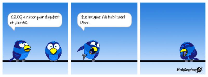 Le corona...quoi ? - Page 9 Birds_10