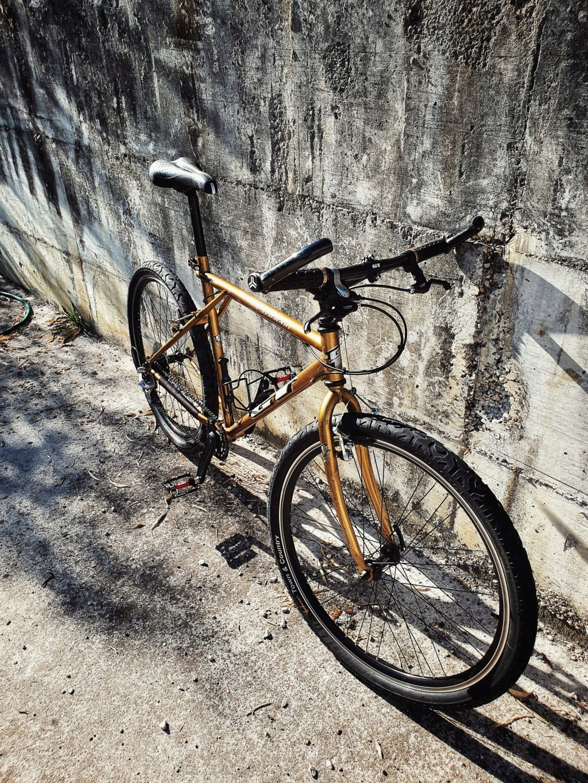 GT Palomar 1998  Gold & Black 20200513