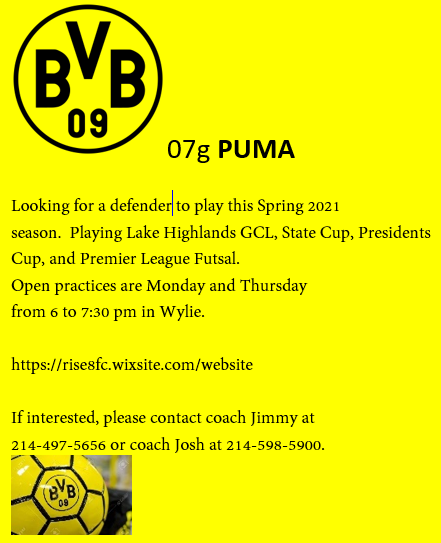 BVB 07g PUMA looking for a DEFENDER for the Spring season Bvb_ad13