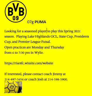 BVB 07g PUMA looking f/talented player for the Spring season Bvb_ad14