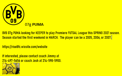 BVB Girls PUMA looking for KEEPER to play FUTSAL this SPRING Bvb_ad15