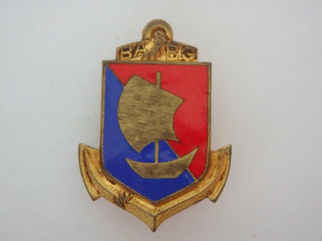 insigne et description troupe colonial P9280111