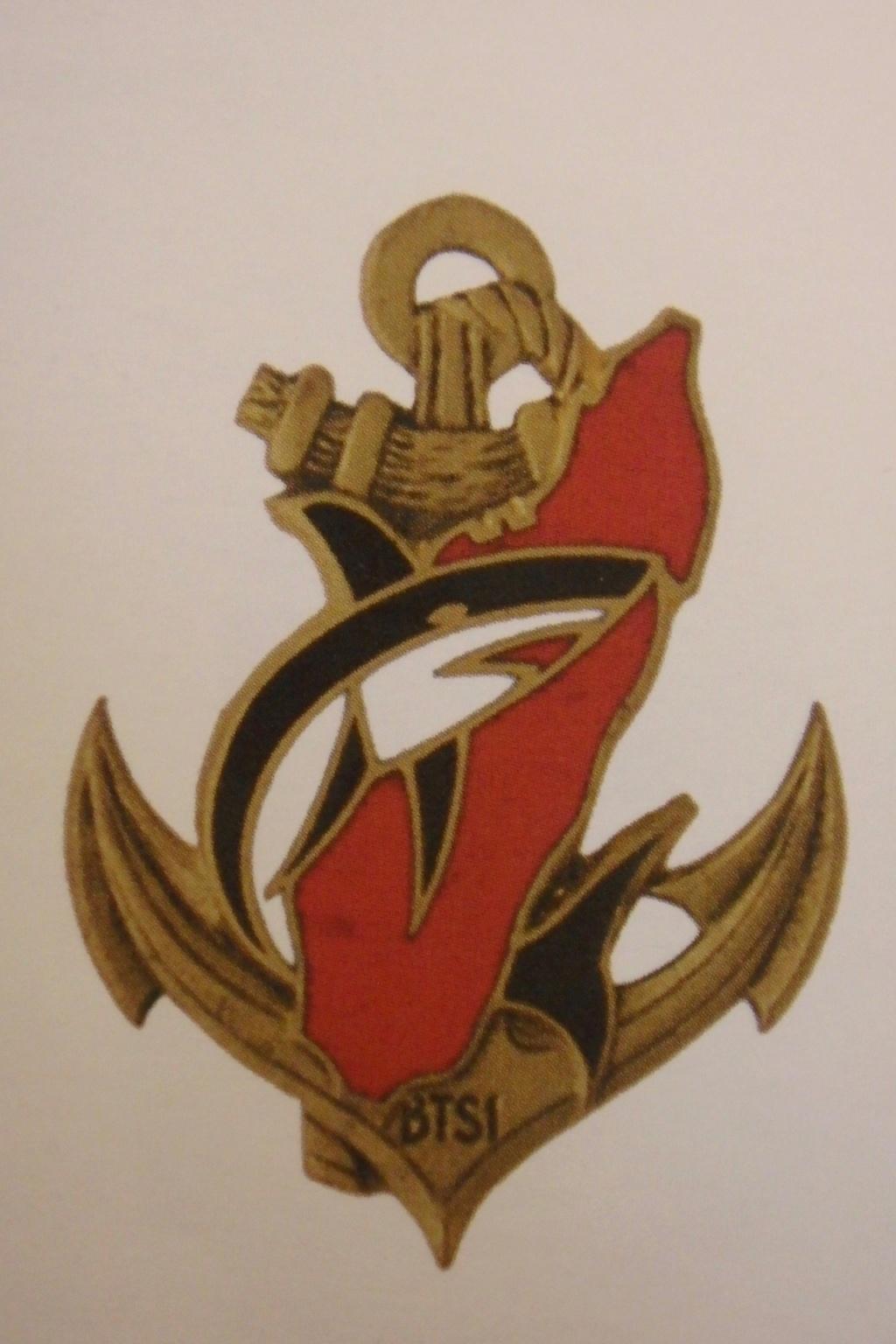 insigne et description troupe colonial Pb190010