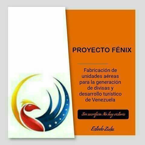 PROYECTO FENIX ( fabricacion de innovadoras unidades aereas) 72a8a610