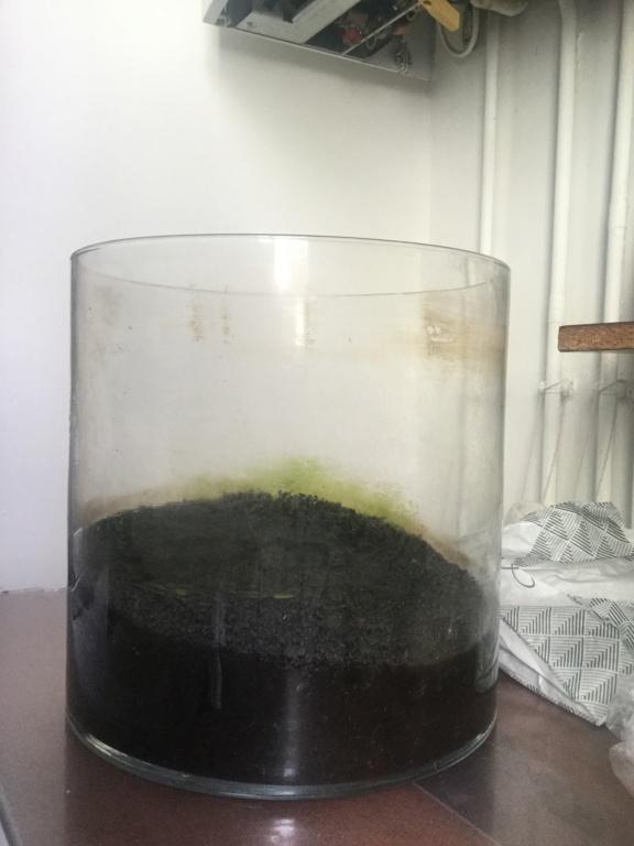 Donne aquarium et substrat Img_6510