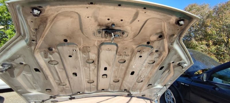 [F4RT85] Laguna III.1 GT 4C 2L TURBO 205 (Barres de toit) - Page 5 Img_2046