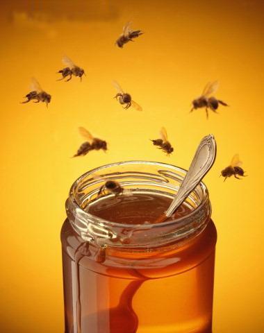 Le miel Images10
