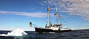 Orca Orca0710