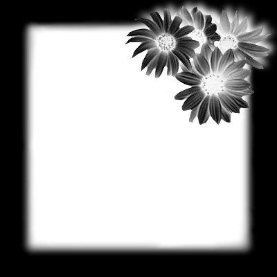 Mariage en noir et blanc - Page 2 0jj5yh10