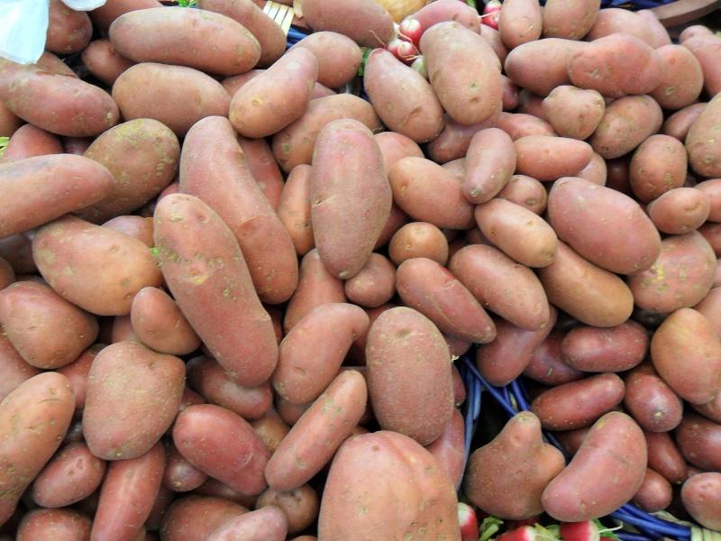 Les pommes de terre Copie_18