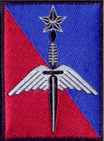 La brigade des forces spéciales terre (BFST) a été créée à Pau le 1er  juillet 2002 Bfst10