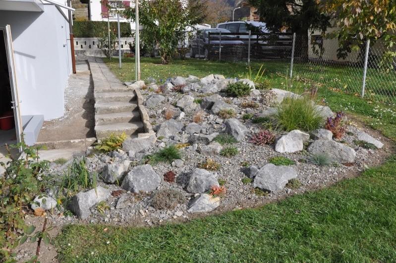 La création de ma rocaille Dsc_0012