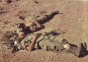 Soldat d'AFN Soldat18