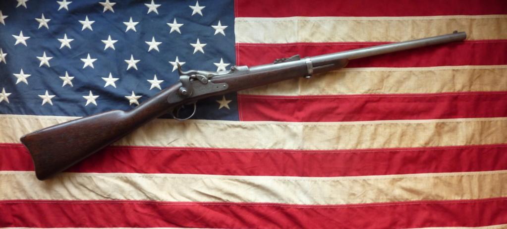 US Cavalry M1873 Trapdoor carbine Spring11