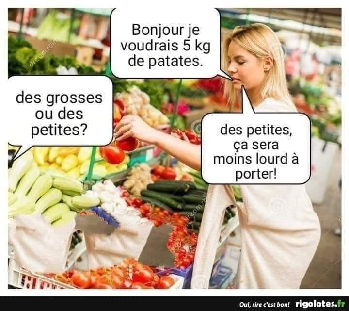 humour - Page 35 17426810