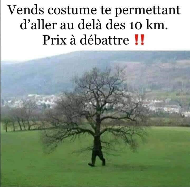 humour - Page 36 17624110