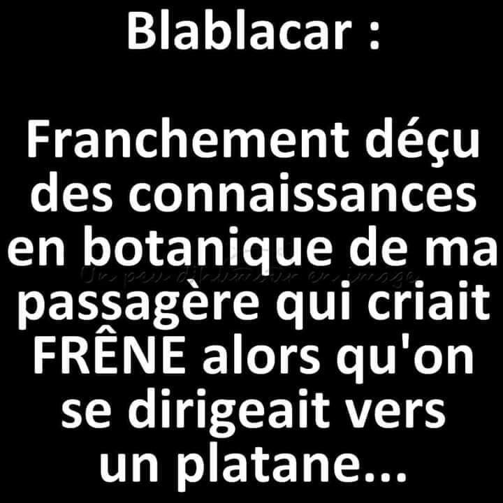 humour - Page 37 17972410