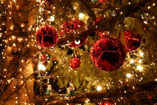 News - Thème de Noël ! Nowel10