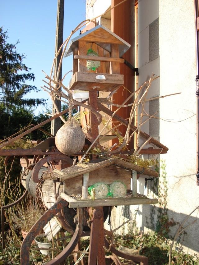 nourrissage des oiseaux Mangeo14