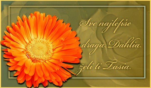 Dahlia, srecan rodjendan - Page 2 Dahlia10
