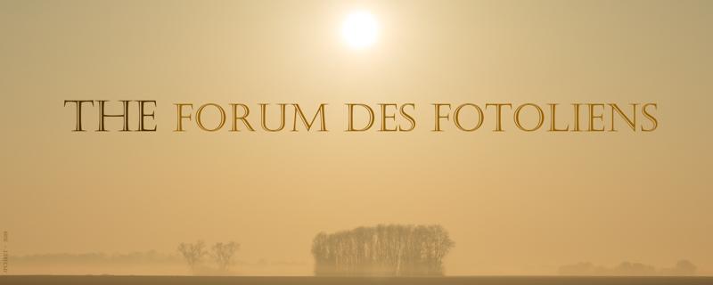 Le Forum des Fotoliens (le forum des Microstocks)