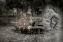 spooky graphics 18014610