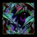 spooky graphics God_kn10