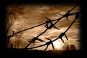haunted houses and scenery Wire10
