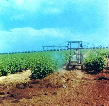 Fermes Agricoles, Viticoles, Région de Meknès Lucien21