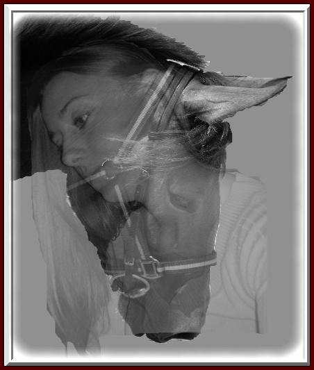 La galerie des essais - Page 4 Ortenc10