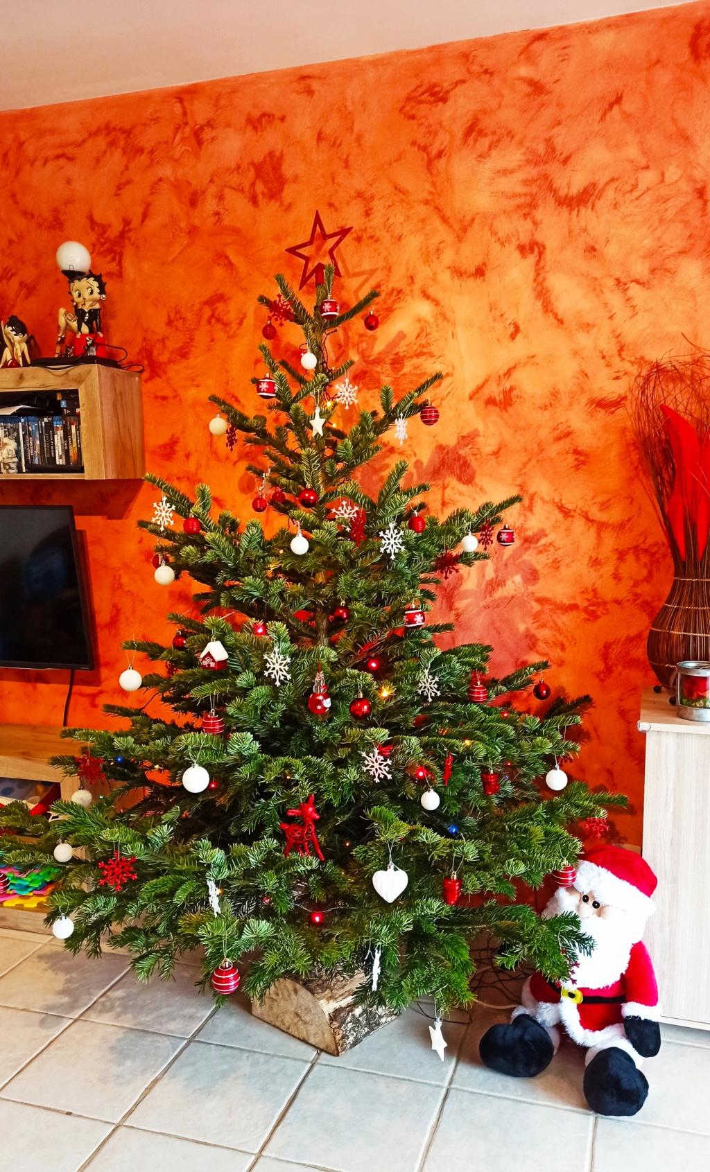 C'est bientôt Noël: montre moi ton sapin  !!  - Page 6 Img_2012