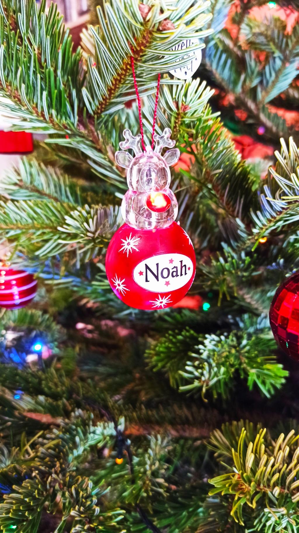 C'est bientôt Noël: montre moi ton sapin  !!  - Page 6 Img_2013