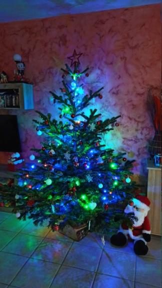 C'est bientôt Noël: montre moi ton sapin  !!  - Page 6 Img_2014