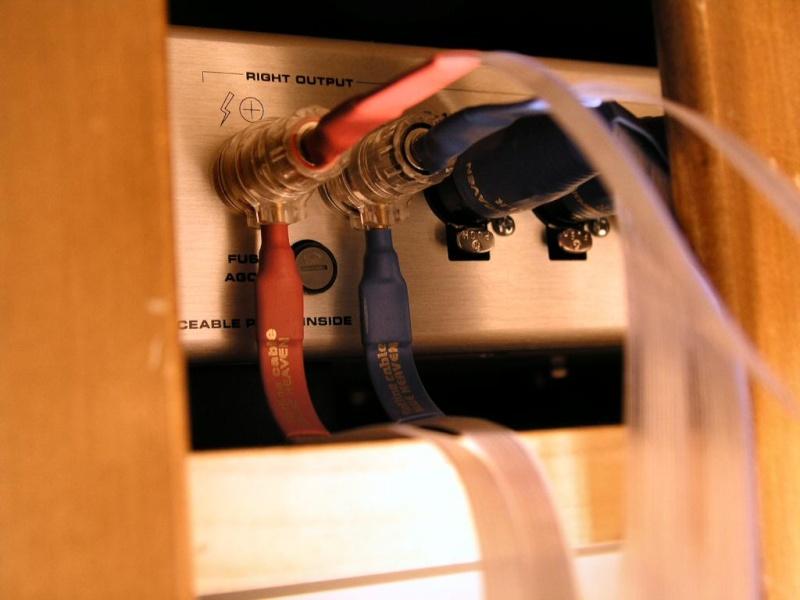 Abril 2008: Votação de melhor foto Pc100713