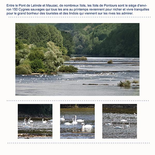 2018-37/ Challenge des invités / Page clean 3 photos  - Page 5 2018-028