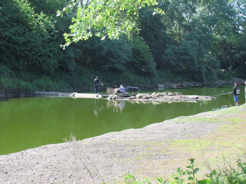 ils ont pollué, mon lac.......... - Page 3 Mai20119