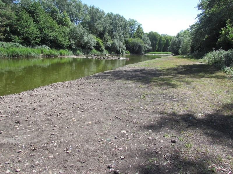 ils ont pollué, mon lac.......... - Page 3 Mlko_410
