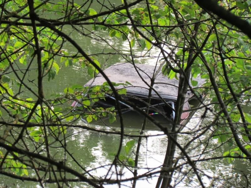ils ont pollué, mon lac.......... - Page 2 Rere_210