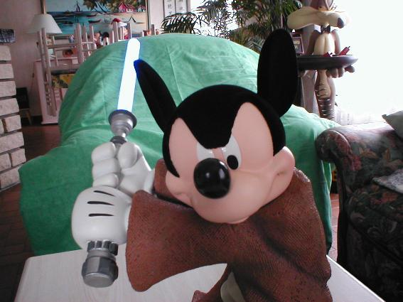 Collection N°23 : la petite collection de Coyote Mickey11