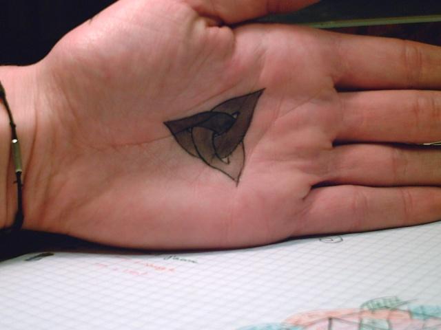 Au tatou tatoué Pict0012