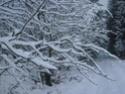 Le temps à Madelonnet du mois de décembre 2007 1010