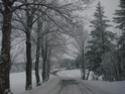 Le temps à Madelonnet du mois de décembre 2007 2007_183