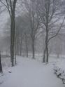 Le temps à Madelonnet du mois de décembre 2007 310