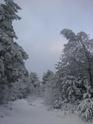 Le temps à Madelonnet du mois de décembre 2007 313