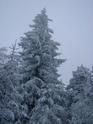 Le temps à Madelonnet du mois de décembre 2007 514
