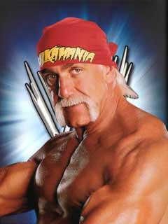 Hulk Hogan 83770210