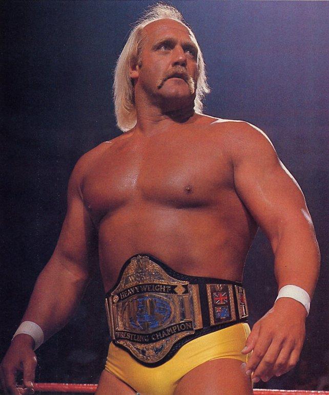 Hulk Hogan Wrld-h10